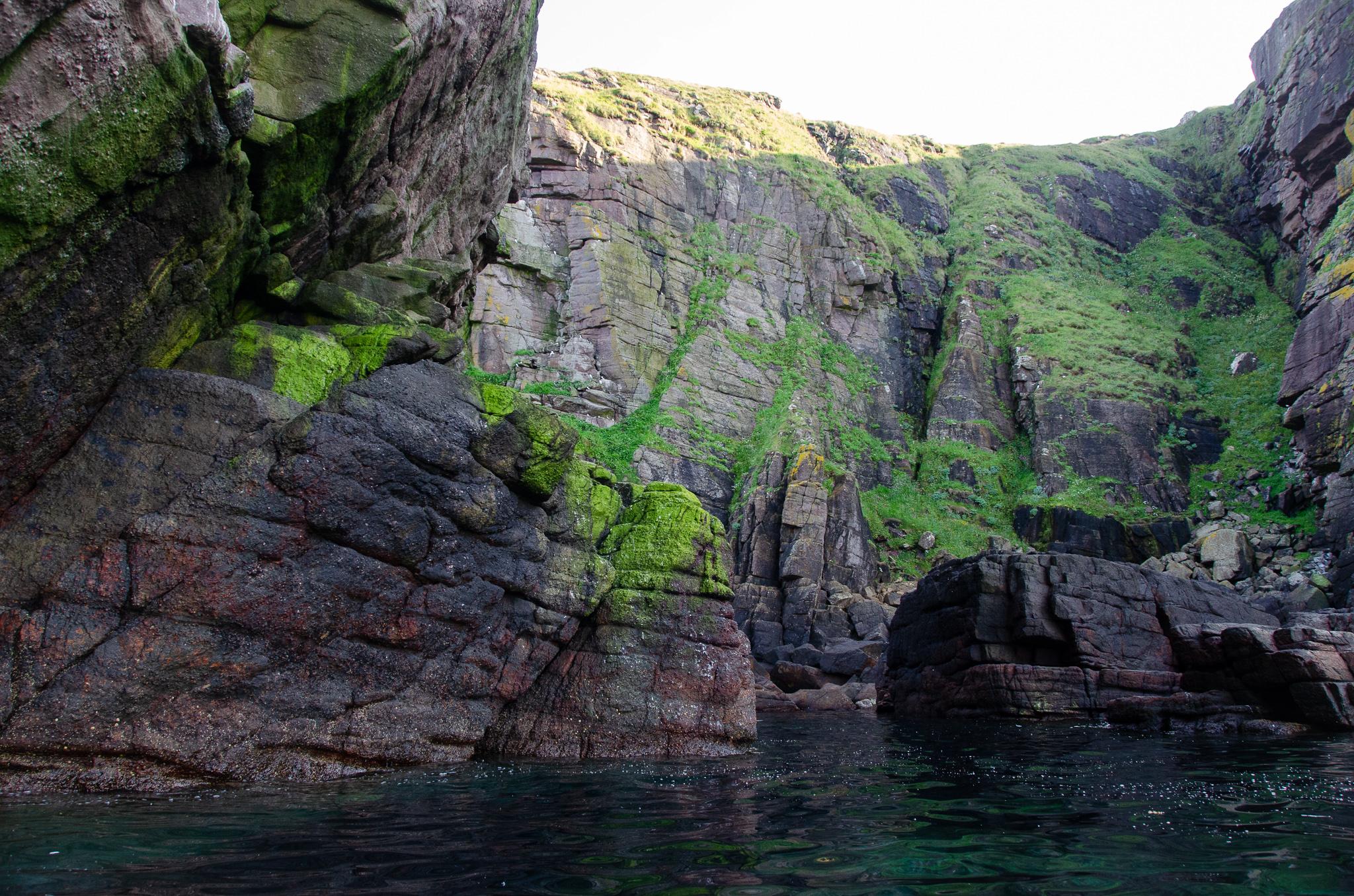 the rugged coastline of Handa Island