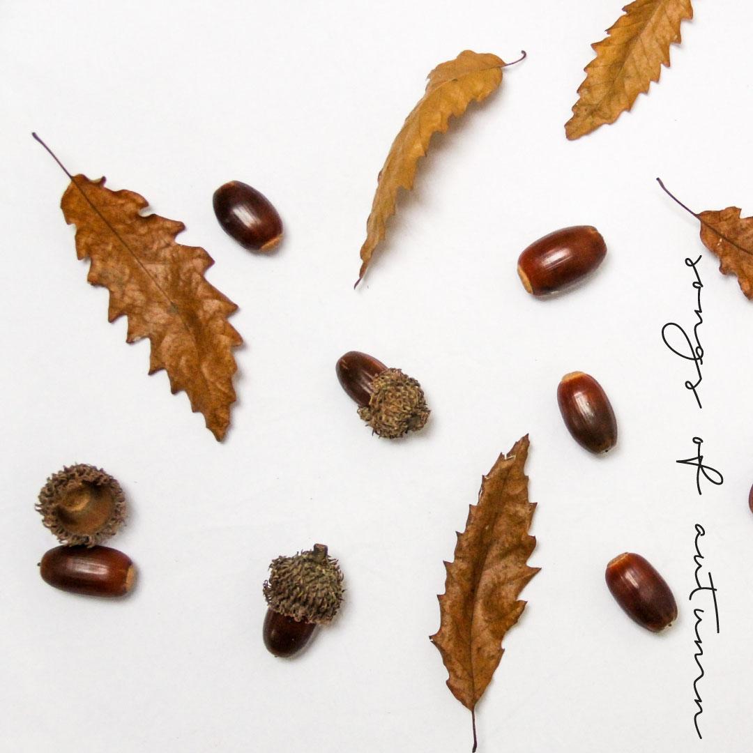 songs-of-autumn.jpg