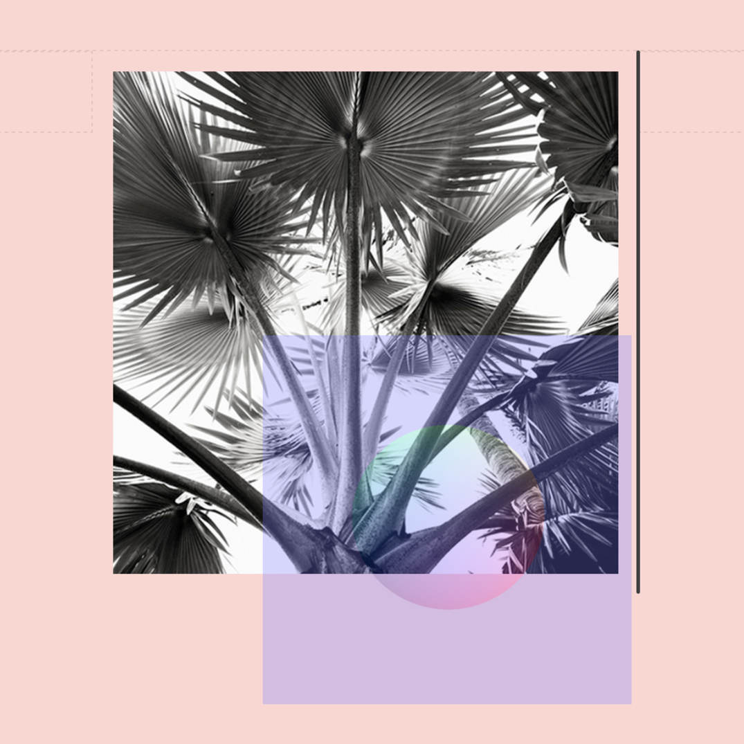 MillicentHawk⌭Optimal-Contact⌭⋅PalmSphere-b.png