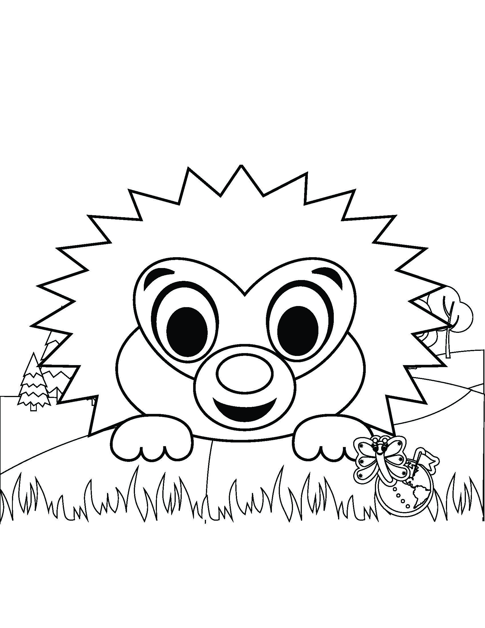 Hudson the Hedgehog