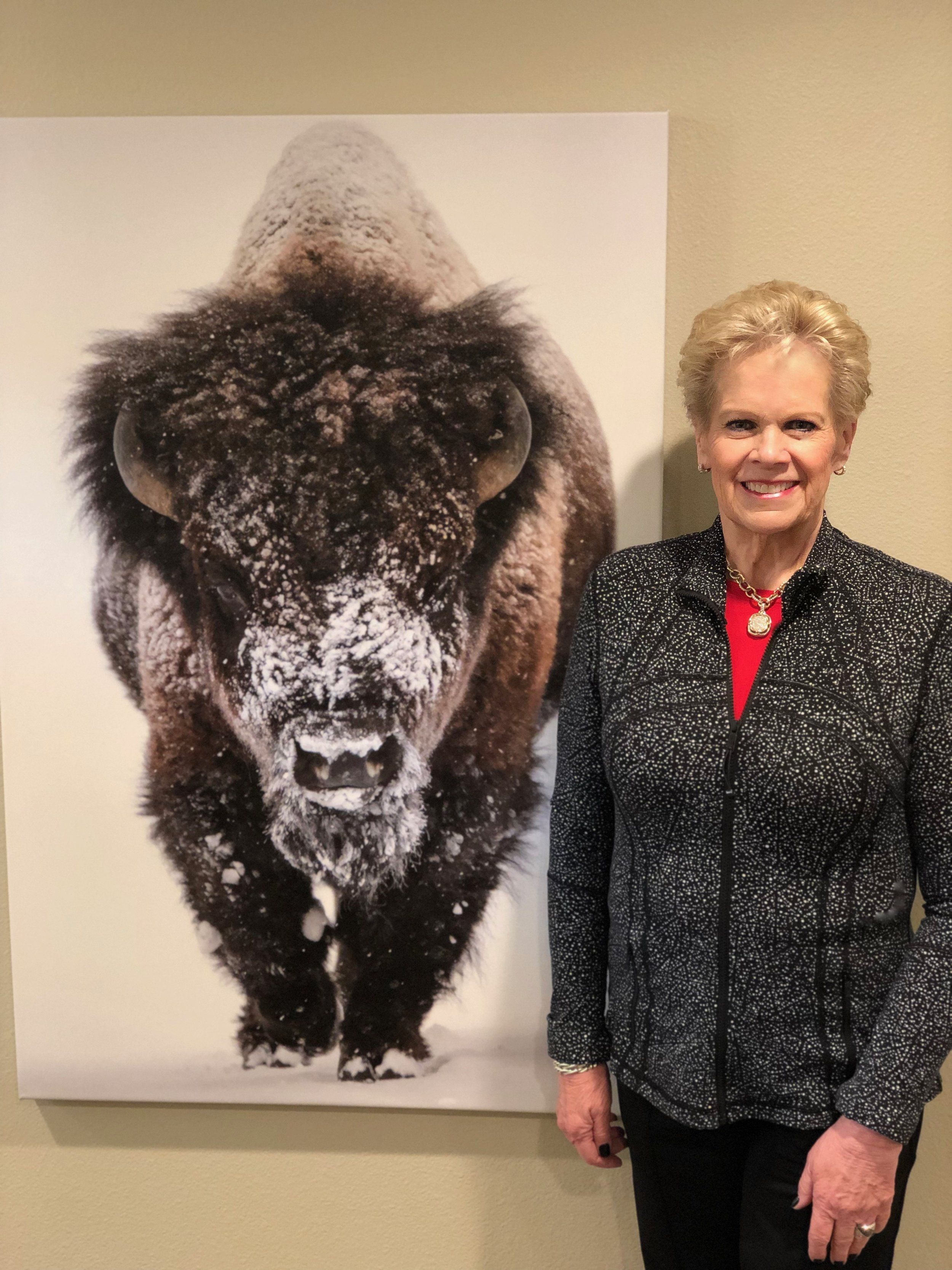 Our bison reminder in the office.