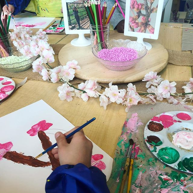 Honoring the beauty of the cherry blossoms with an invitation to represent blossoms through the languages of paint and collage 🌸🌸 #reggioinspired #cherryblossom #100languages #invitationtocreate #atelier