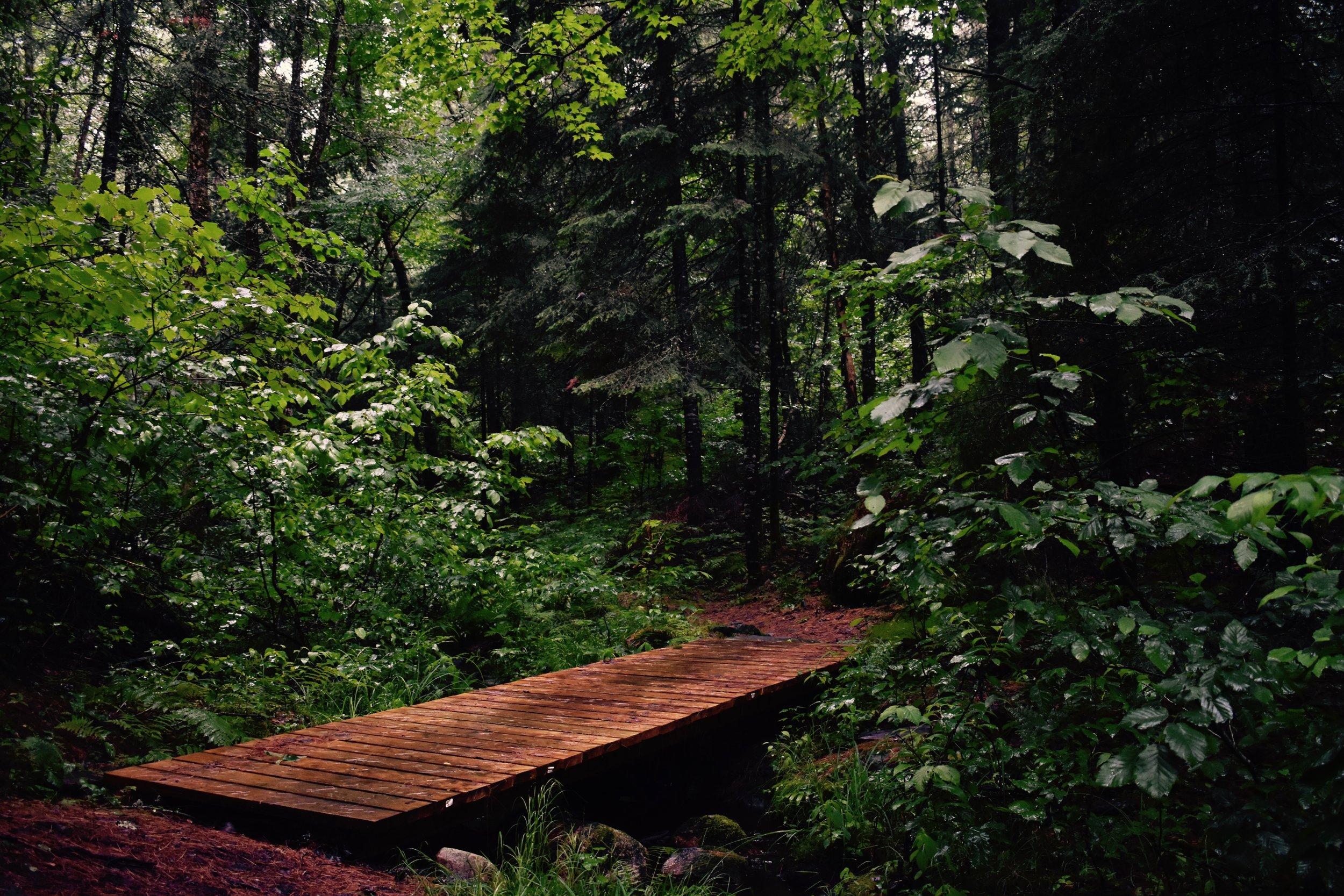Portage Trail, Rapides-des-Joachims, Quebec.jpg