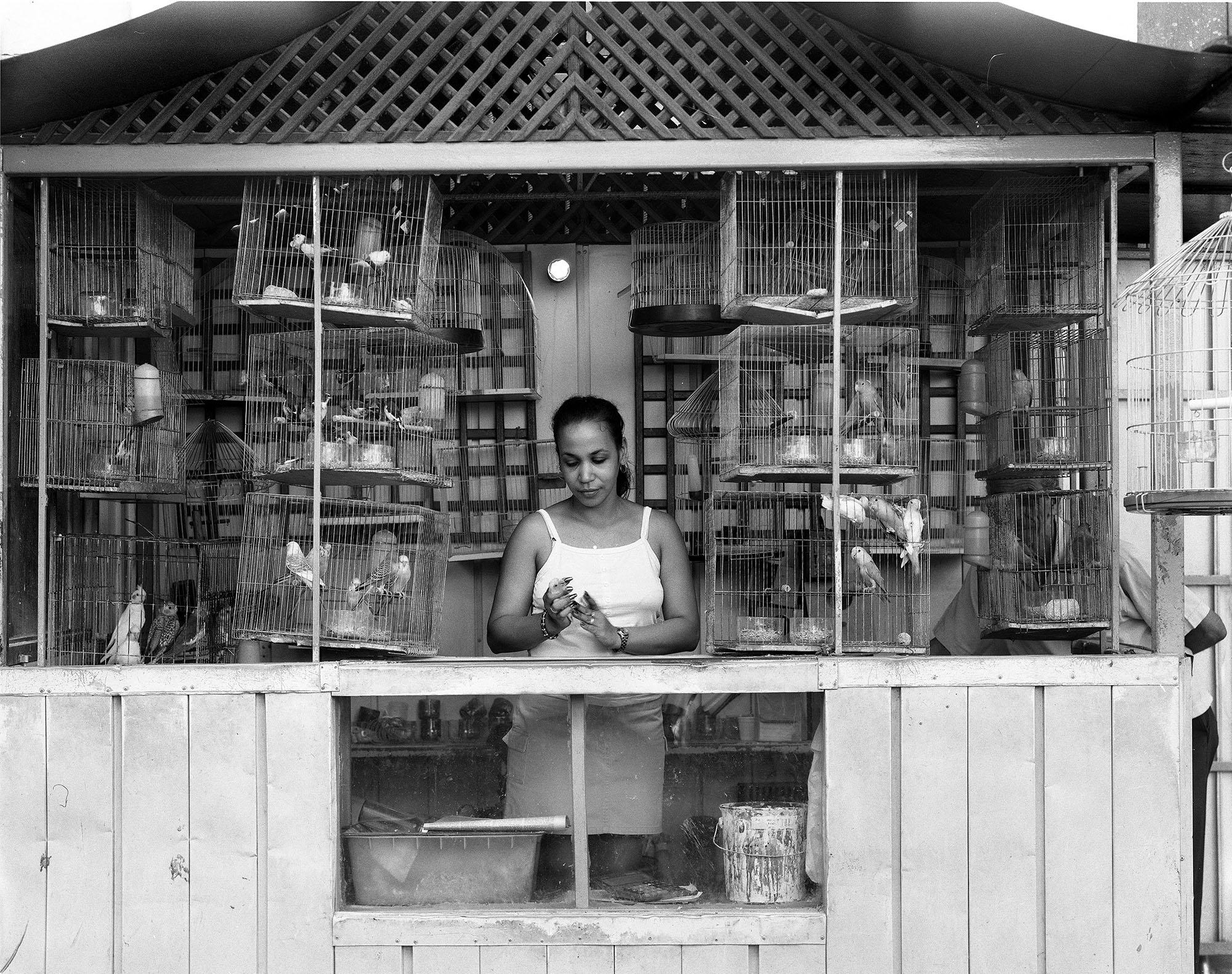 Havana_Bird_Seller.jpg
