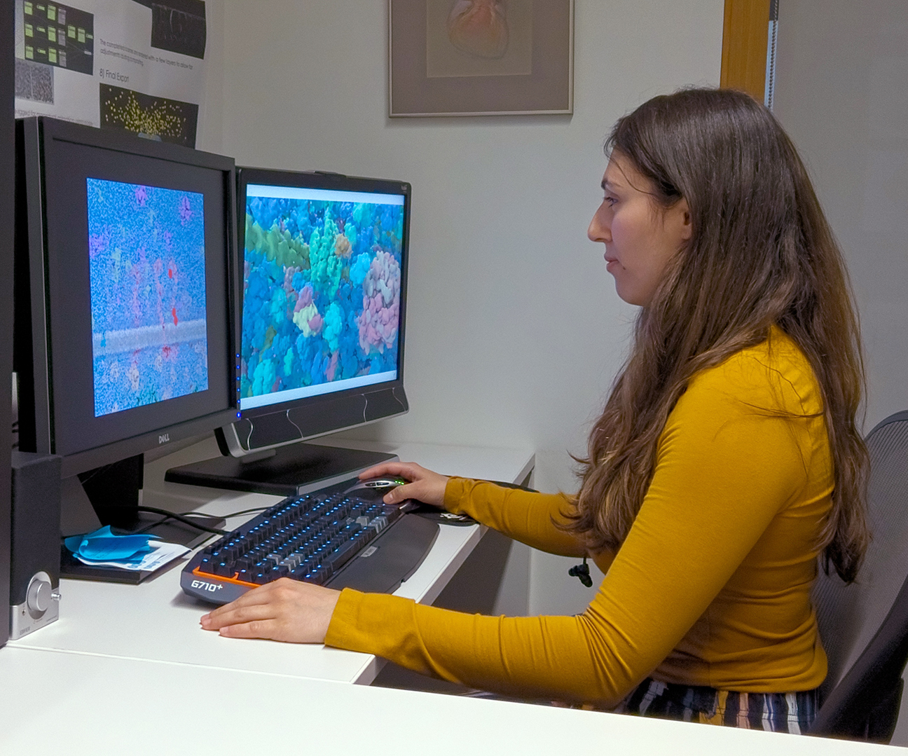 BMC student Avesta Rastan operating a Tobii T60XL eye tracking system. Eye-tracking technology is used to evaluate where audiences are looking as they consume visual media.