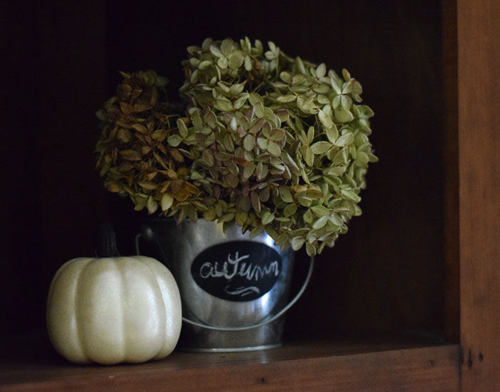 A Little Fall Decorating