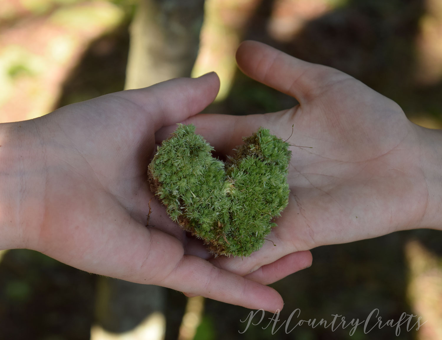 A heart made of moss...