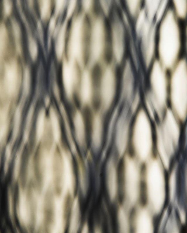 Untitled (DSC0311) From the #photographic #series #latticialinterference. #printsavailable . . . #art #photography #fineart #fineartphotography #abstract #abstractart #conceptualphotography #conceptualart #latticeforms #light #perception #incamera #printsforsale #incameraforms #opticalart #color#archivalpigmentprints #pigmentprints available #johnrohrer #johnrohrerart