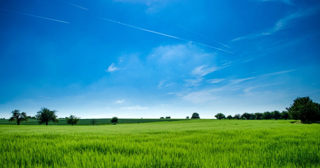 agriculture-clouds-countryside-440731.jpg