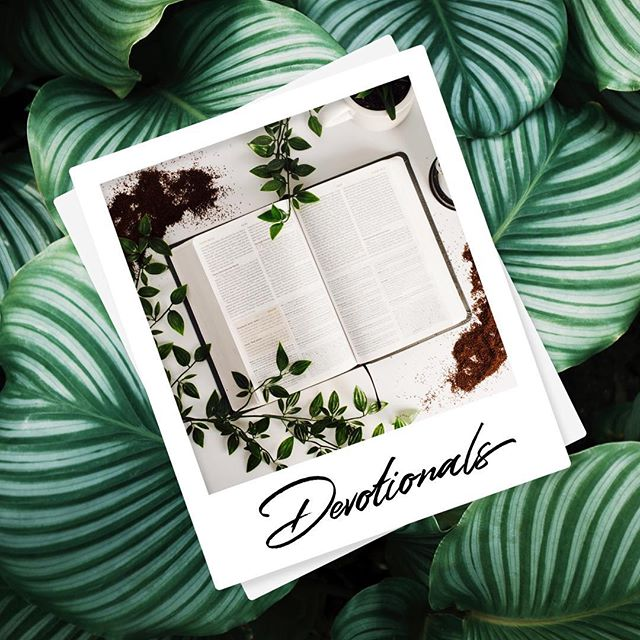 HELLO friends! We have a new section up on the blog our: {Devotionals} . 📗 . We have written these devotionals to help guide you through your daily walk with God. We encourage you to write your own prayers and responses to our questions! . To read our devotionals go to www.safeinjesus.com and click on 'Devotionals'. . We hope you enjoy them 😃 we will be adding more as soon as possible, be sure to let us know what you think! . . . .  #safeinjesus #love #god #jesus #bible #scripture #christianity #christianblog #christiancommunity #christianfellowship #church #holyspirit #bloggers #blog #love #instagood #photooftheday #beautiful #happy #follow #instadaily #repost #nature #smile #life #beauty #instagram #photography #lifestyle #inspiration #dailydevotional