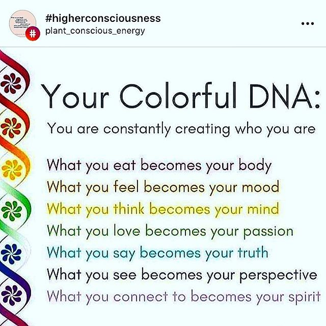 The human body is designed to constantly renew itself. In fact, every cell in the body is replaced by a new cell so that the body fully regenerates every 7-10 years - all thanks to the genetic 'coding' of our DNA. Pretty incredible! _____ #dna #regenerate #renew #body #mood #mind #passion #truth #perspective #spirit #thehealinghouse