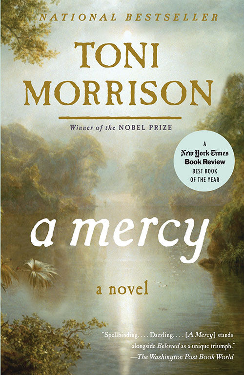A Mercy book cover
