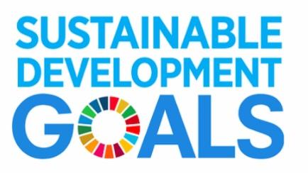 UN+SDG.jpg