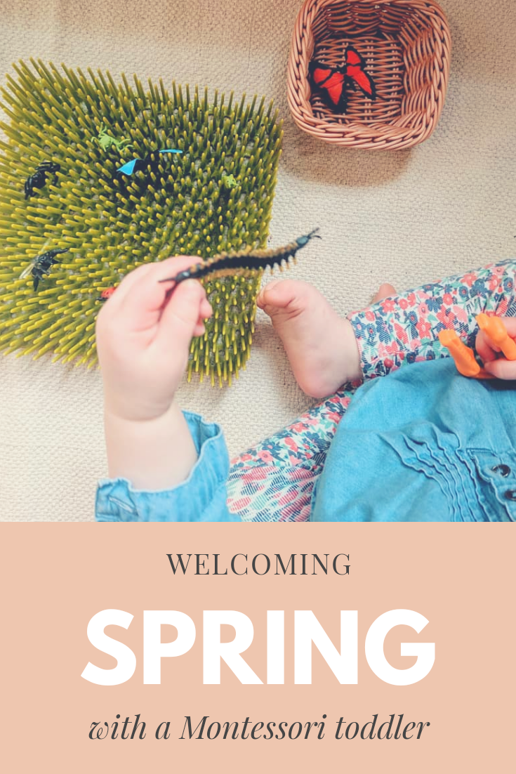 Welcoming Spring - Montessori in Real Life