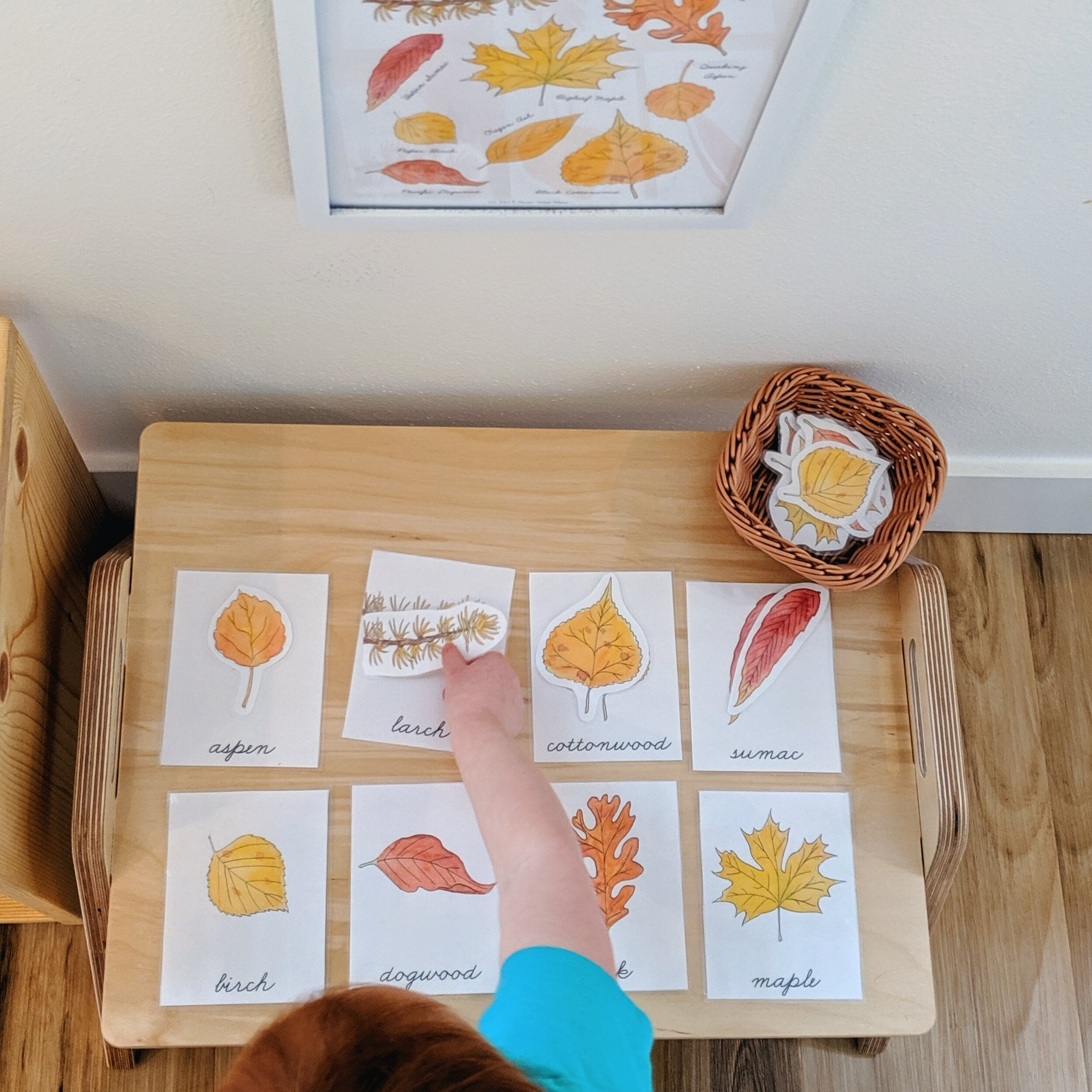 Our Daily Rhythm with a Toddler and a Baby - Montessori in Real Life