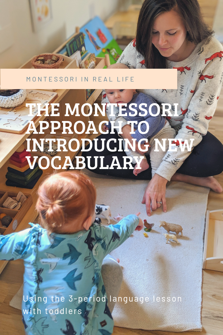 Introducing New Vocabulary - Montessori in Real Life