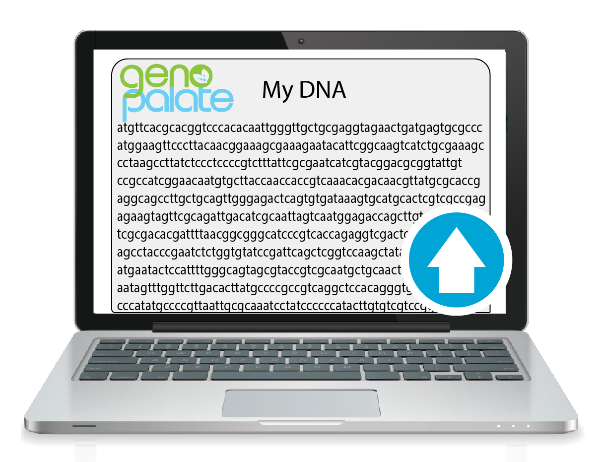 Existing DNA Image-01.png