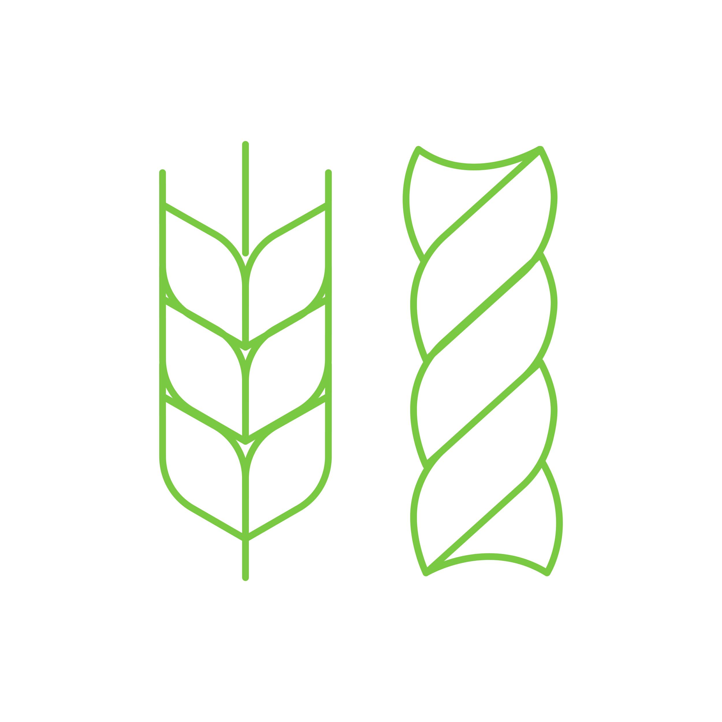 Grains -