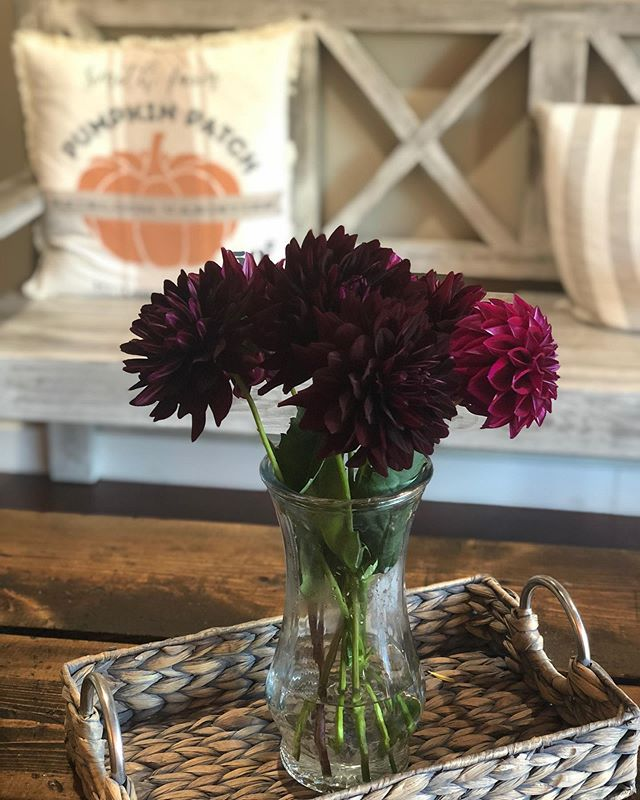 Yes these Dahlias are real! Thank you so much Carole Eichler for our weekly flowers! We are feeling spoiled! You and your husband are blessed with a green thumb!