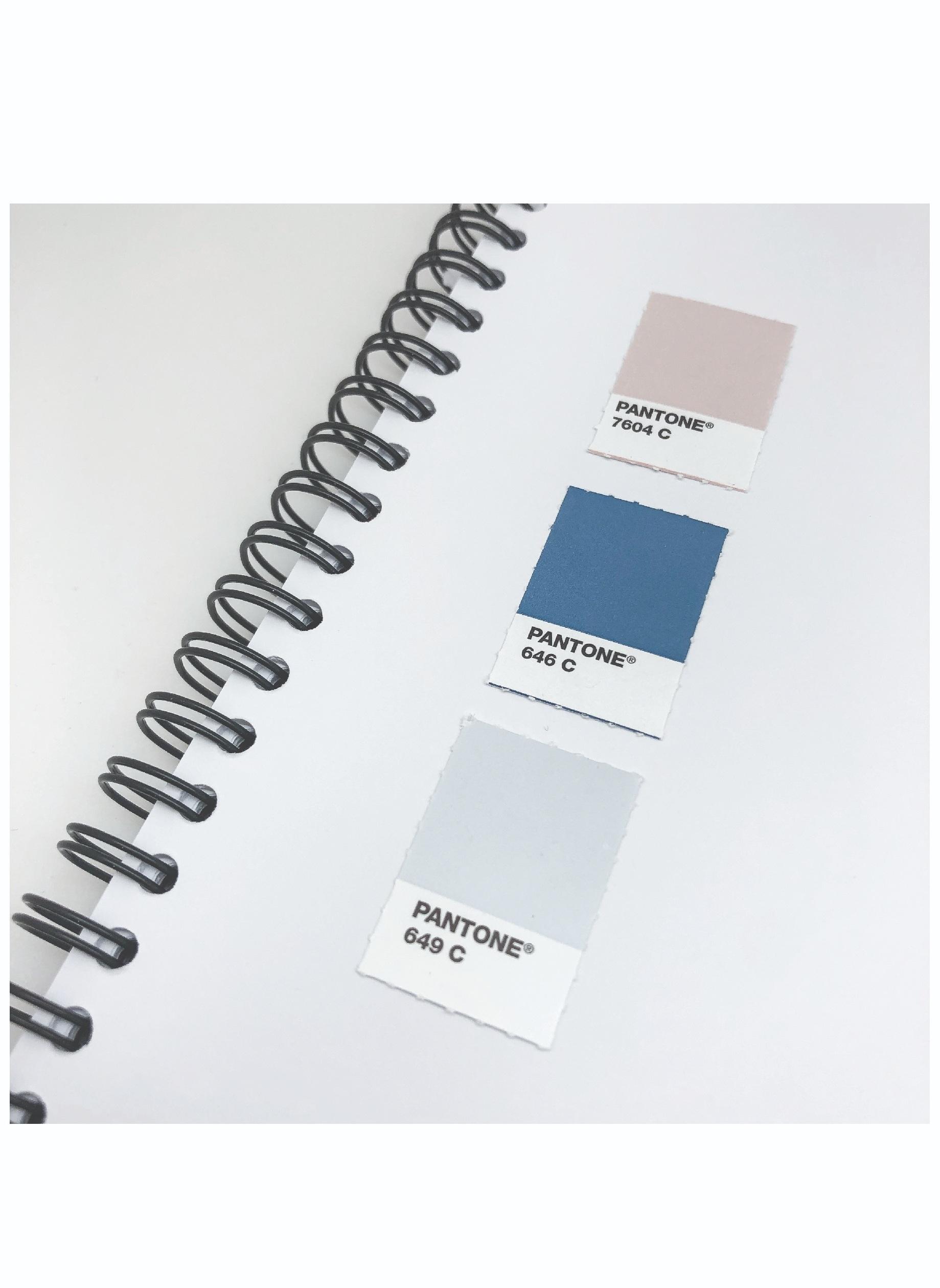 Pantone Color Matching