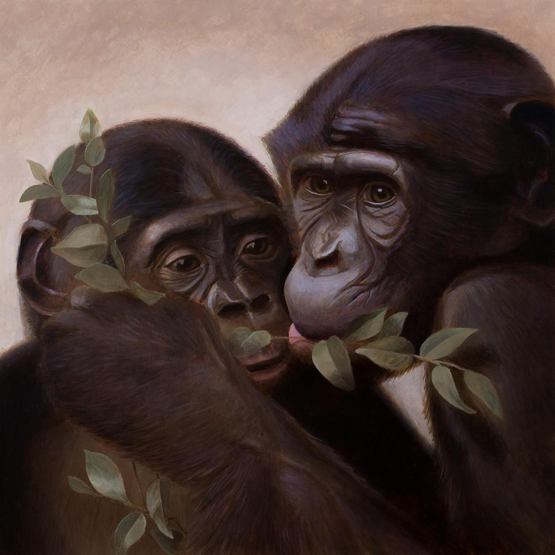 Bonobo-(web).jpg