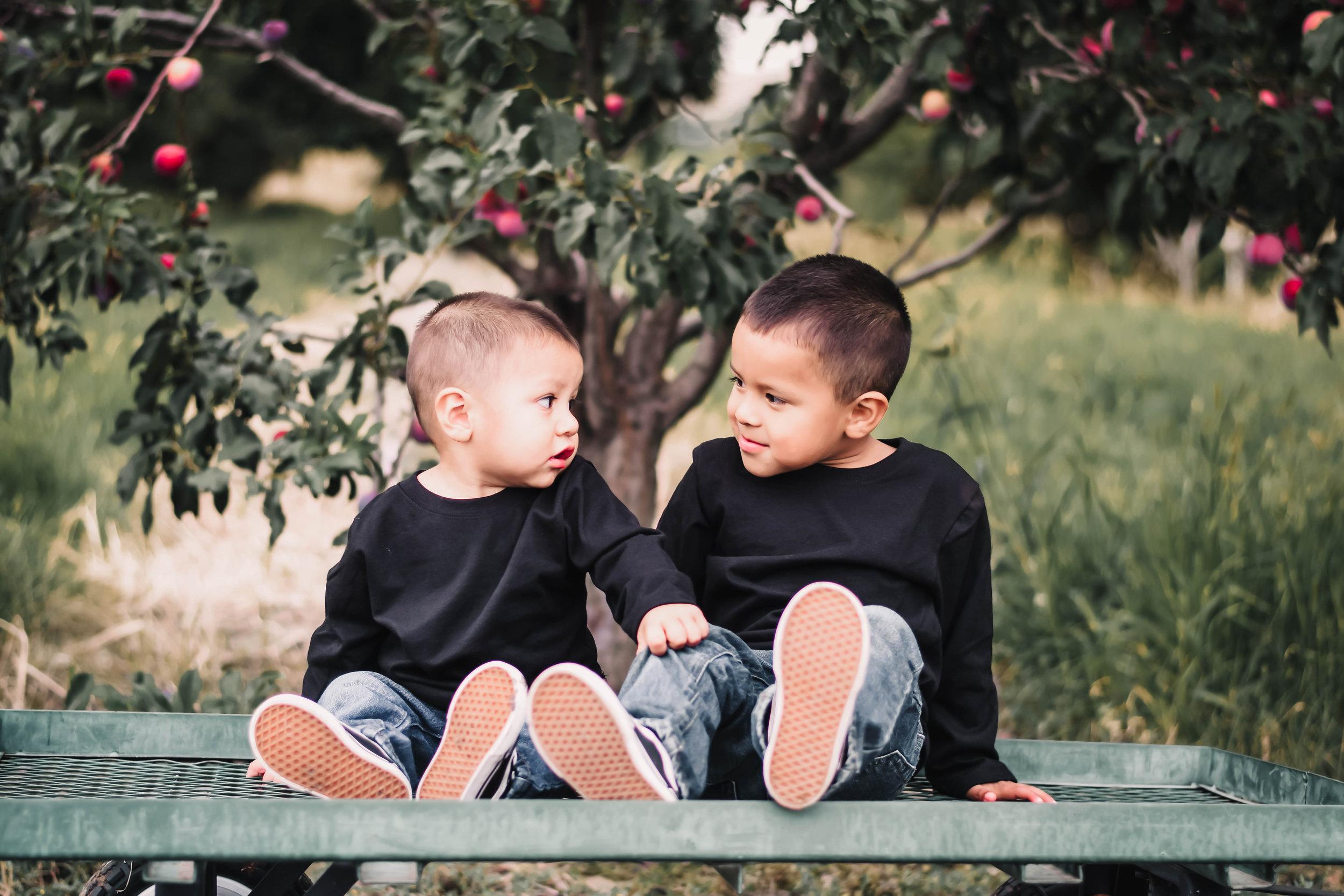 Family Orchard Mini Shoot 2.jpg