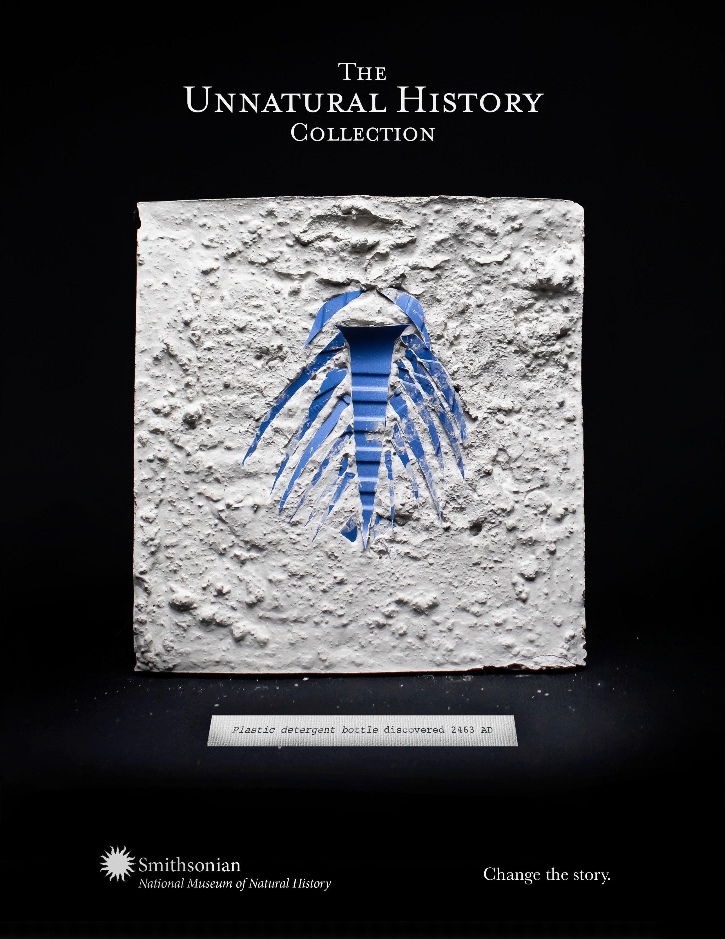 Mahaffey_Sumner_Smithsonian_fossil.jpg