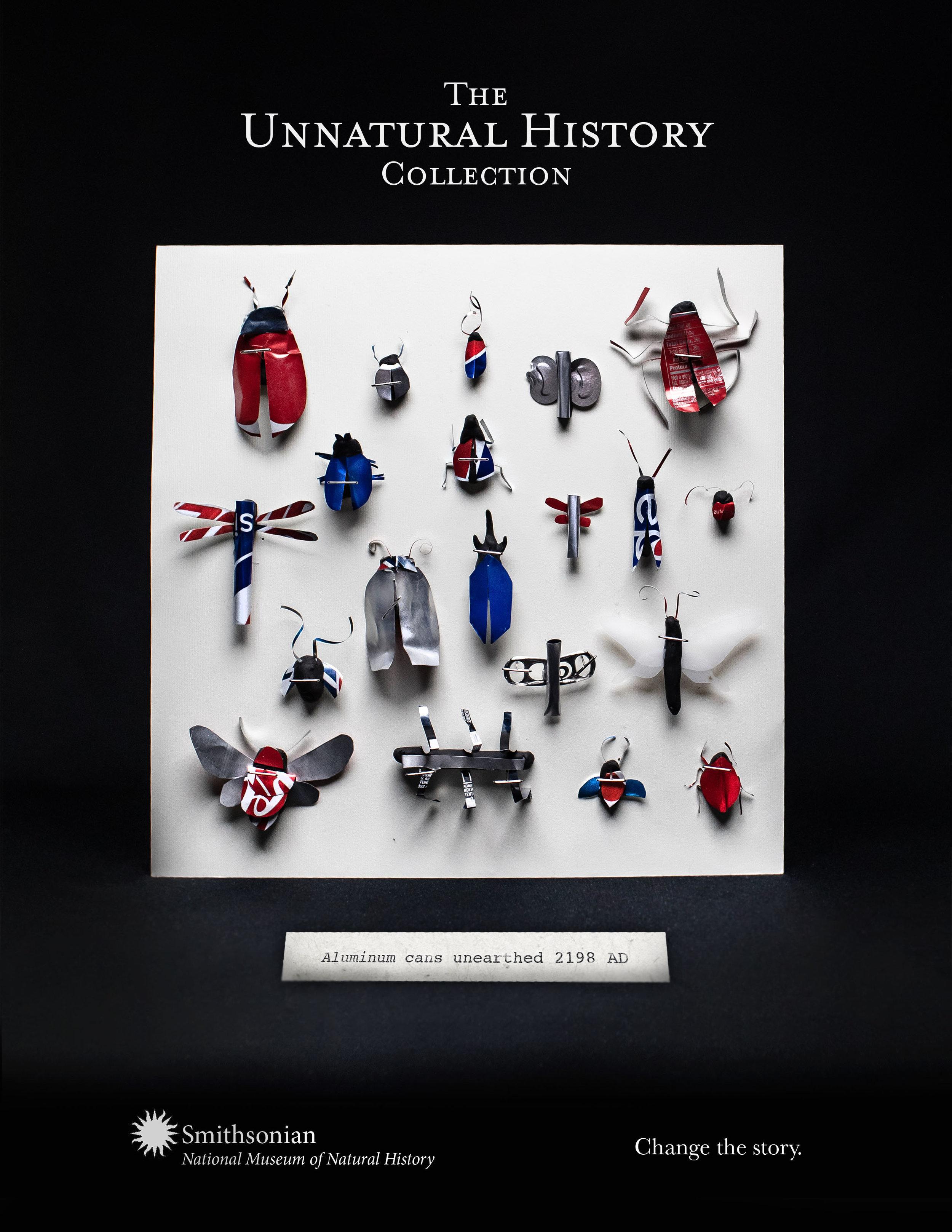 Mahaffey_Sumner_Smithsonian_bugs.jpg