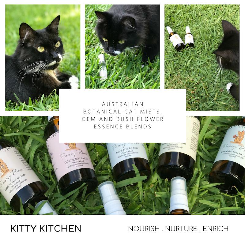 KITTY KITCHEN (5).png