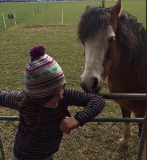 Ida and Fleur horsing around!
