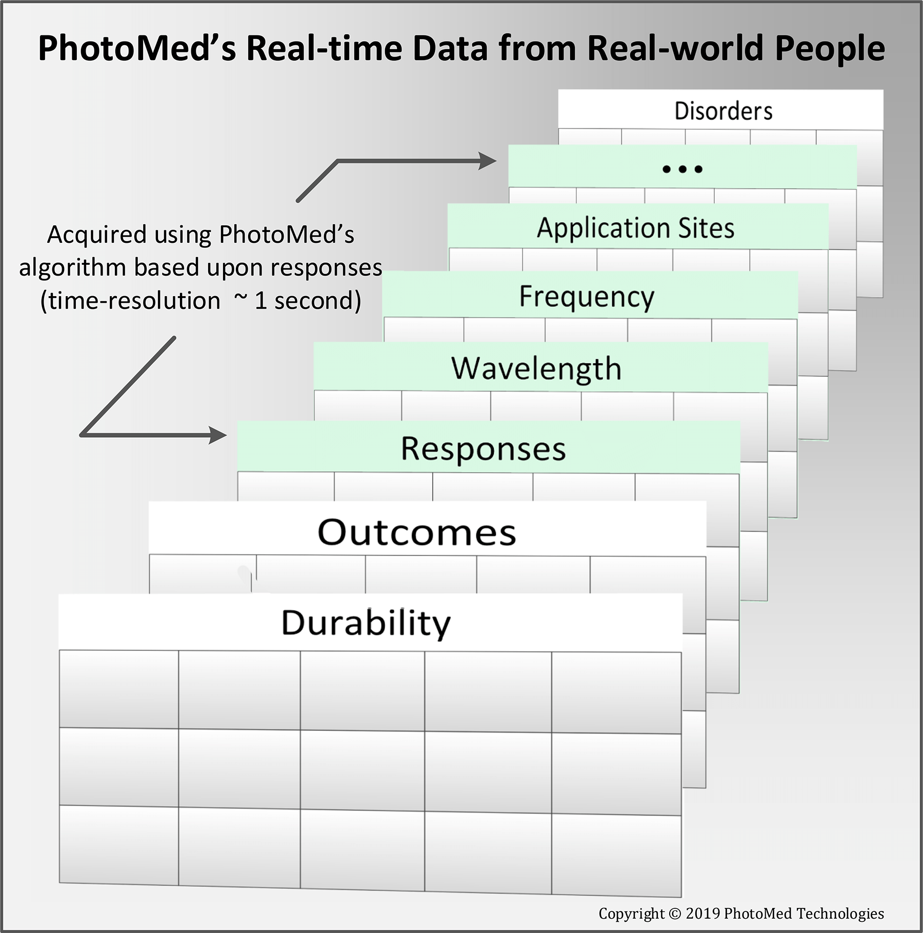 Figure 4  - schematic of data recorded in real-time by the Instant Verification System.