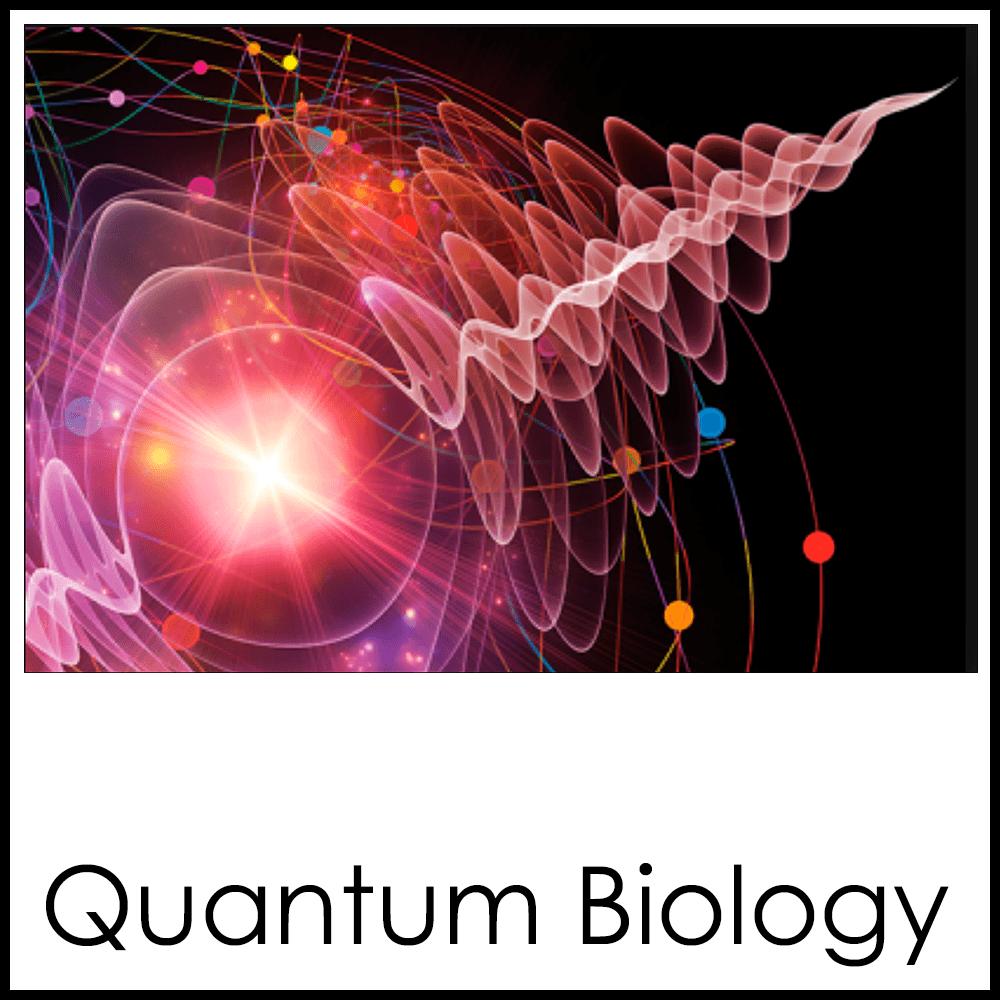 Quantum Biology1x1.png