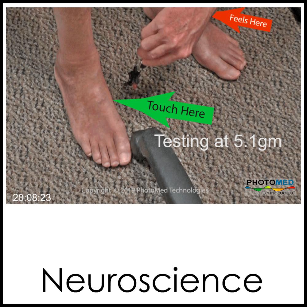 NeuroscienceB1x1.png