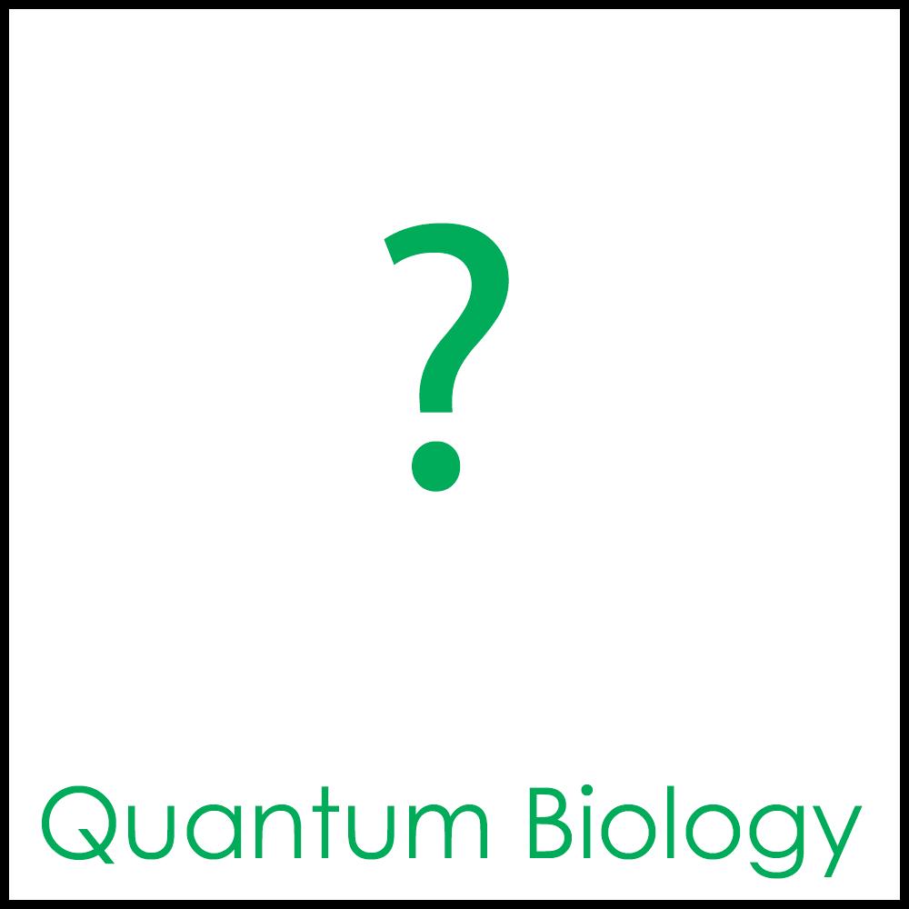 Quantum Biology1x1b.png