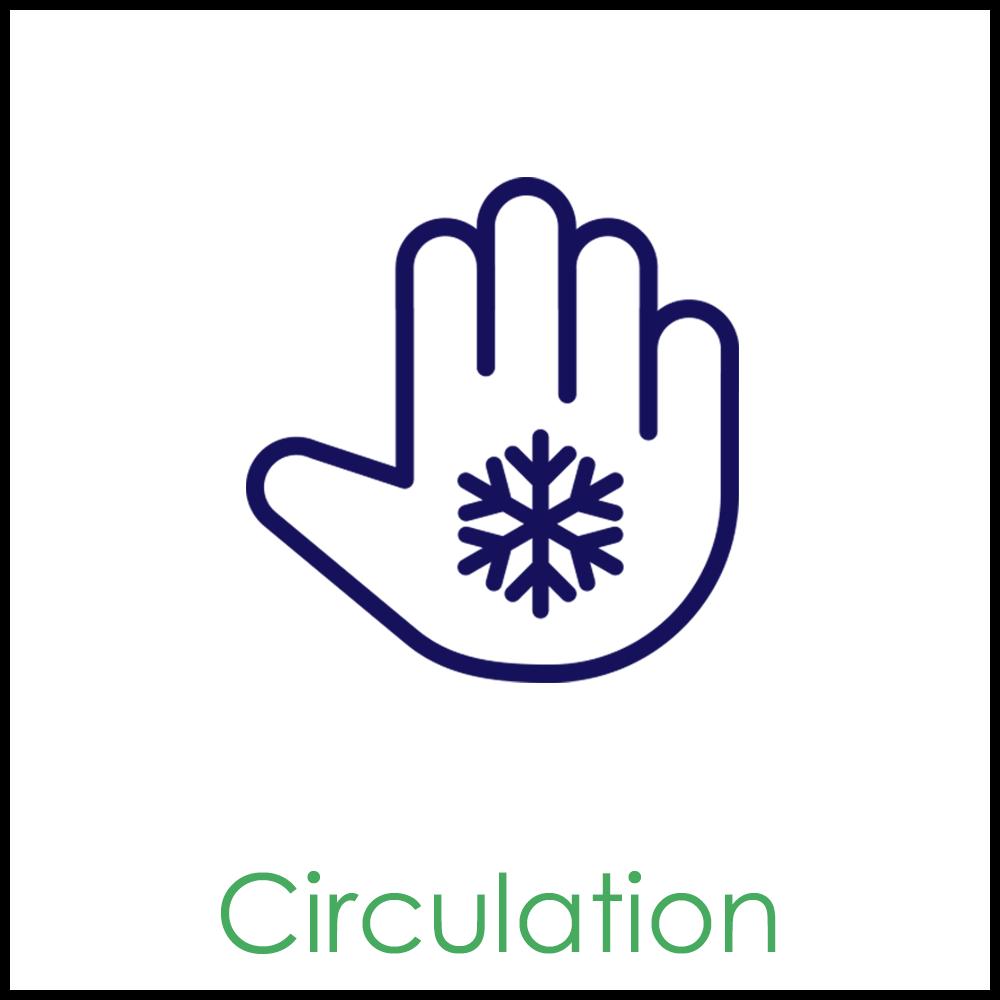 Circulation1x1.png