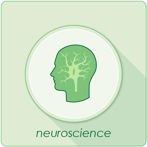 neuroscience_bt.png