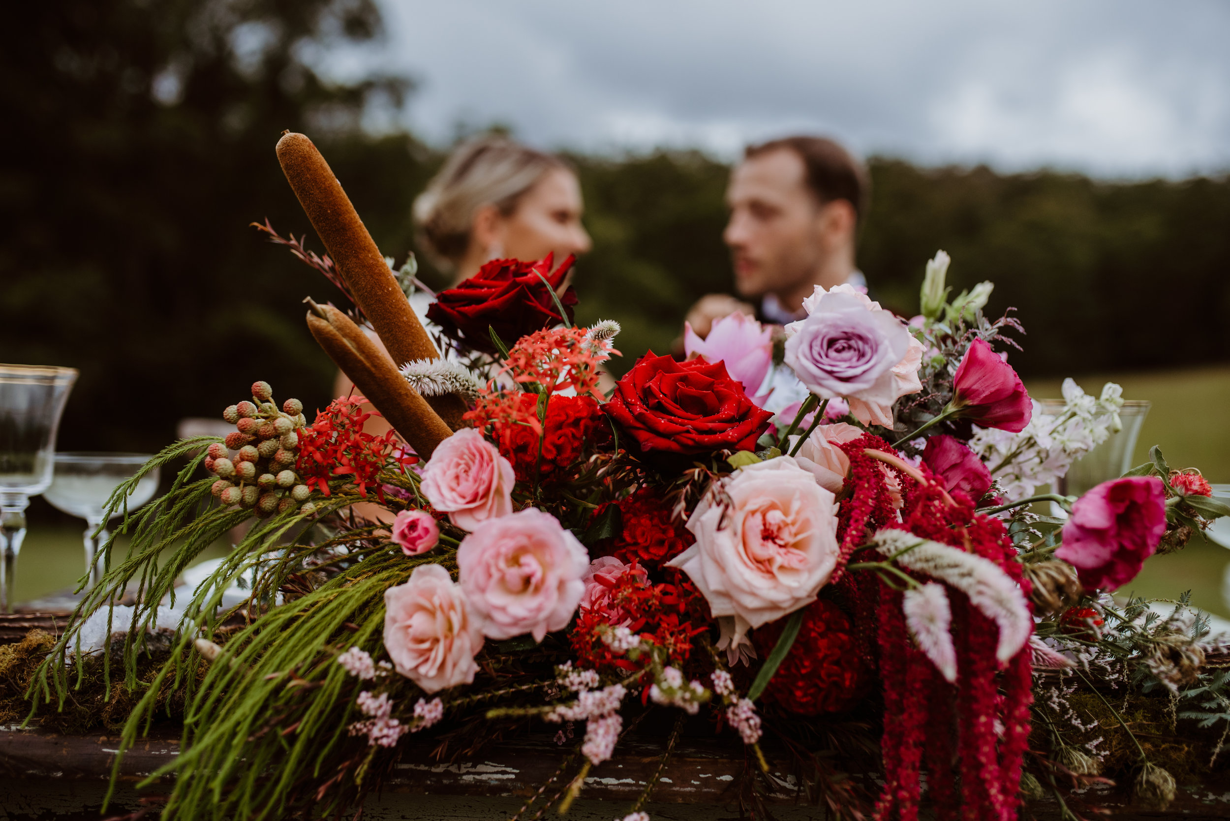 All of these roses are grown locally near Brisbane, see how amazing they can be? Photography by Becky Van Straalen.