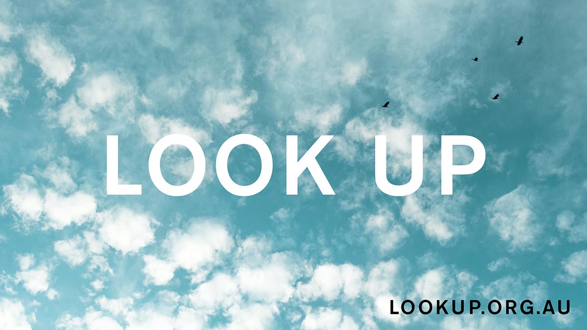 LOOK UP_3of8.jpg