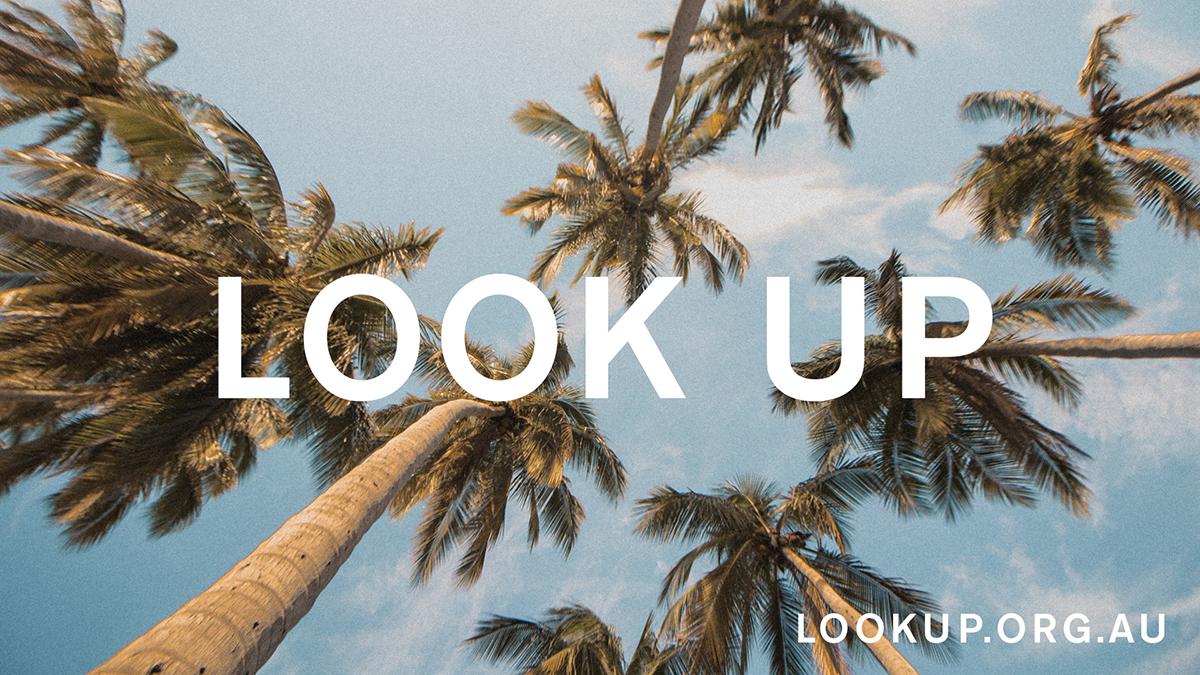 LOOK UP_5of8.jpg