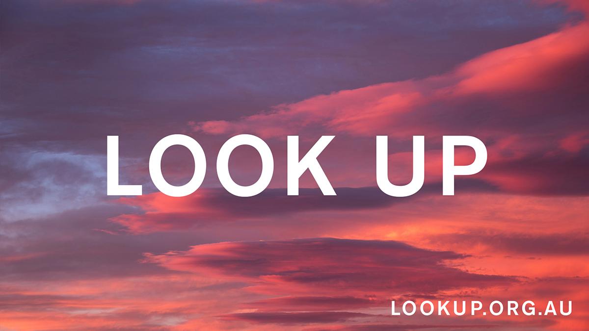 LOOK UP_7of8.jpg