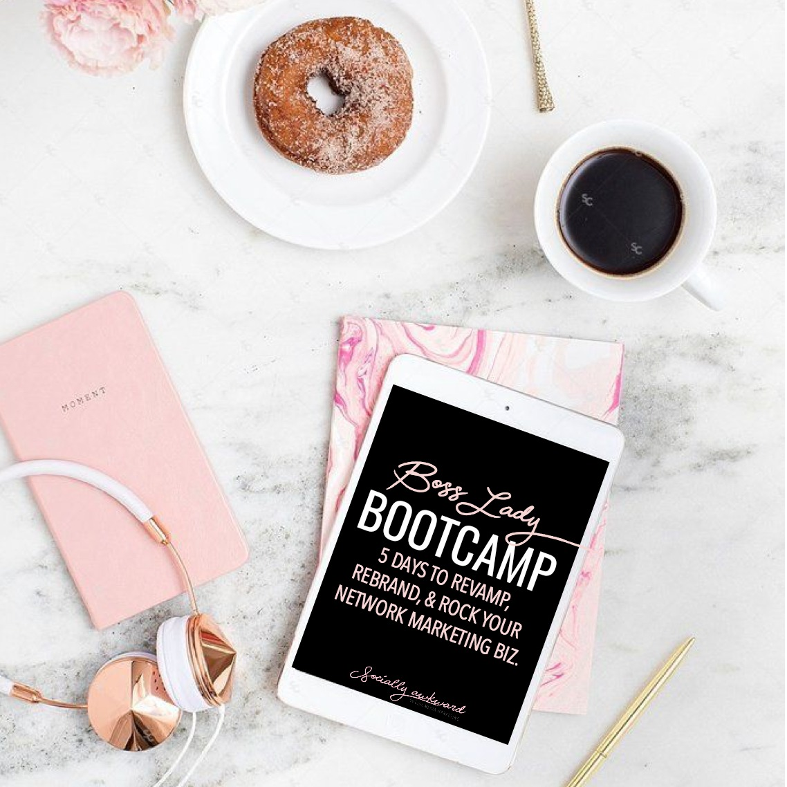 BOSS LADY BOOT CAMP  - A STREAMLINED eCOURSE DESIGNED TO REVAMP, REBRAND, AND ROCK YOUR DIRECT SALES OR NETWORK MARKETING BUSINESS ONLINE.