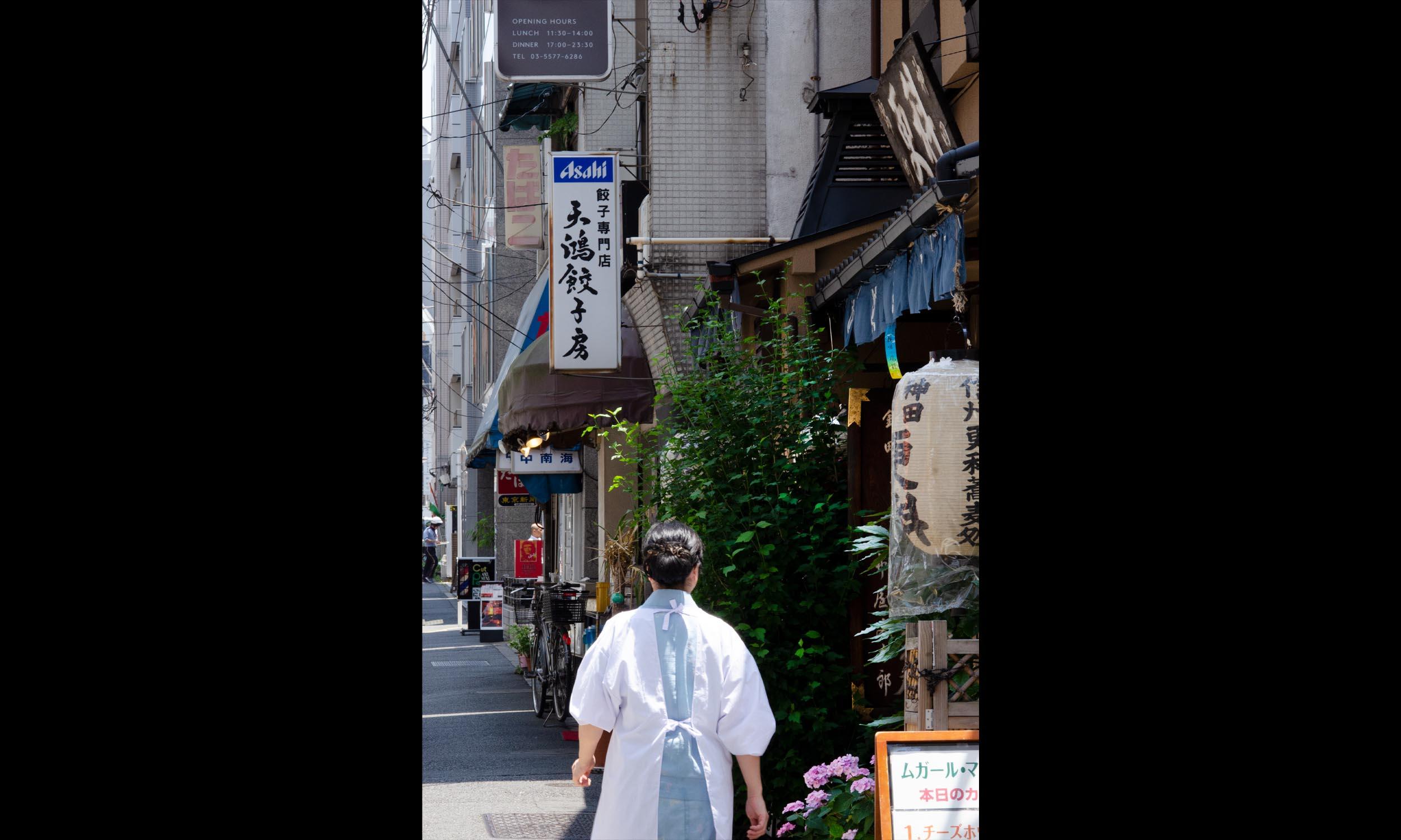 Japan 1a.jpg