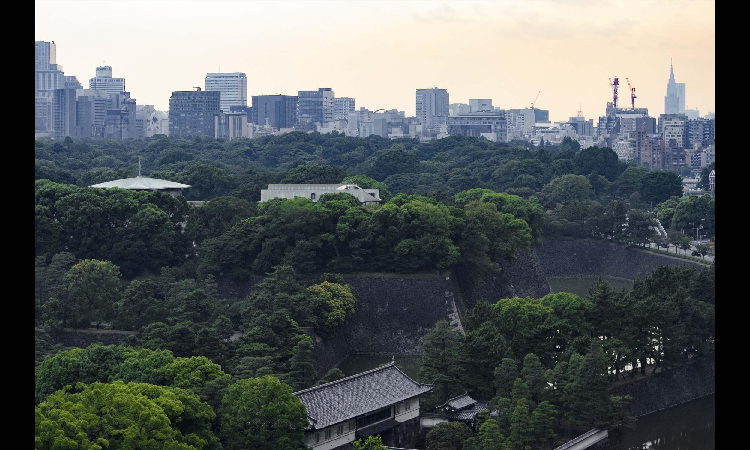 Japan 24.jpg