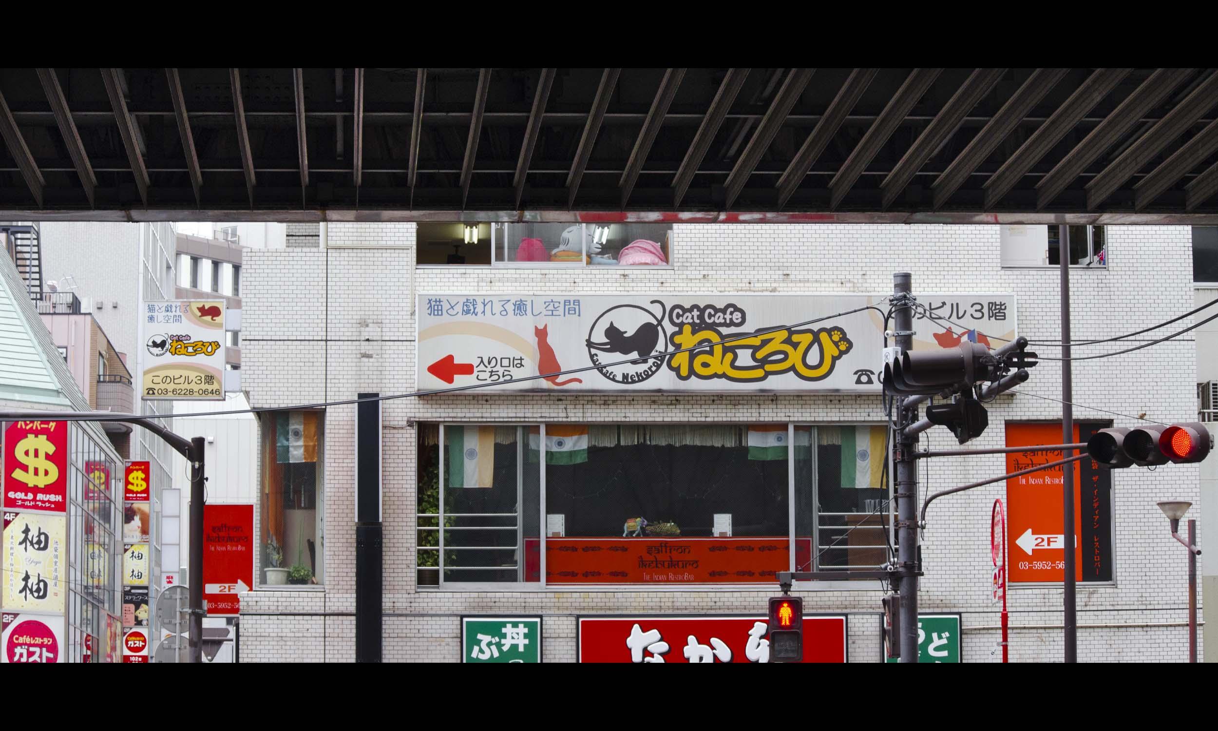 Japan 38.jpg