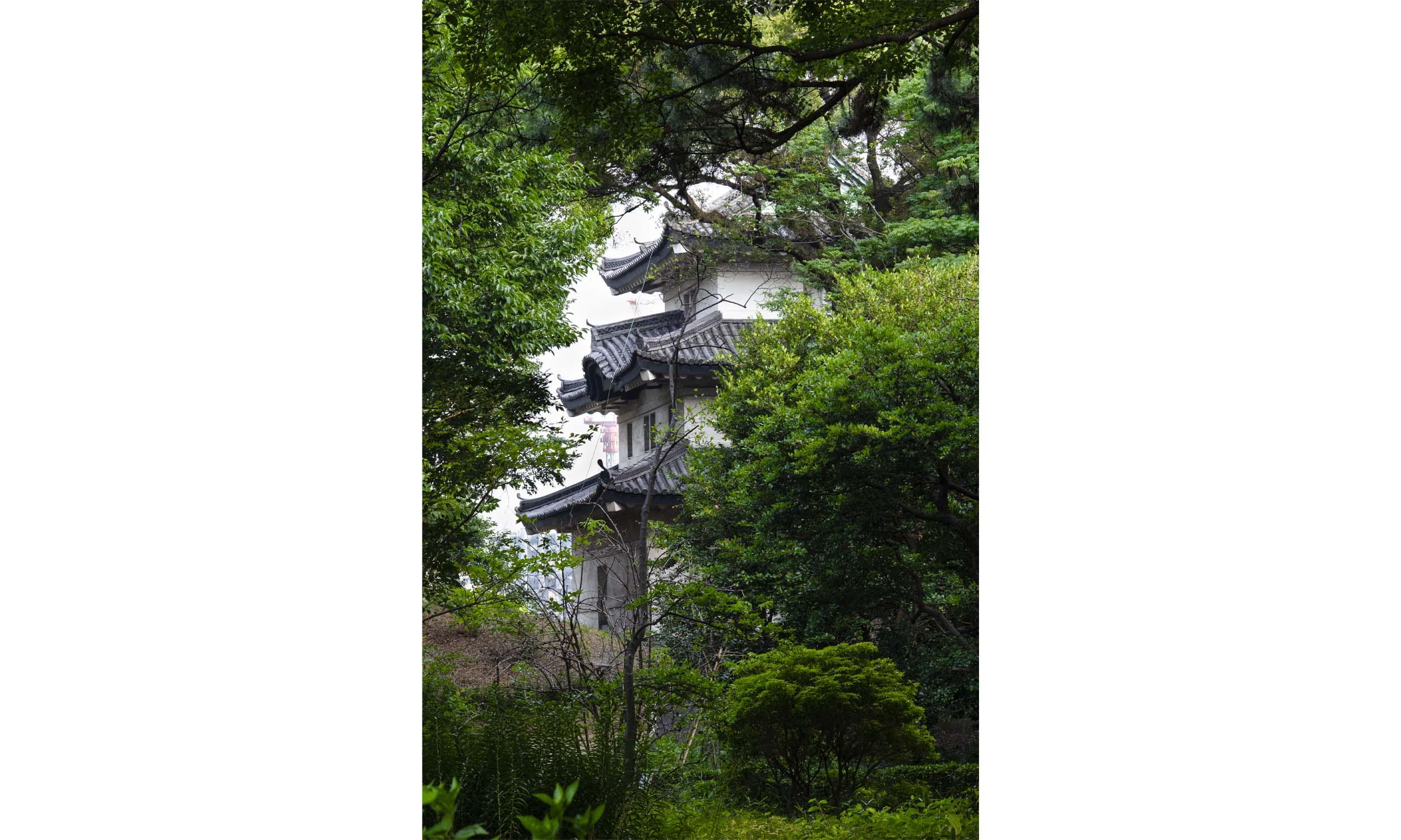 Japan 58.jpg