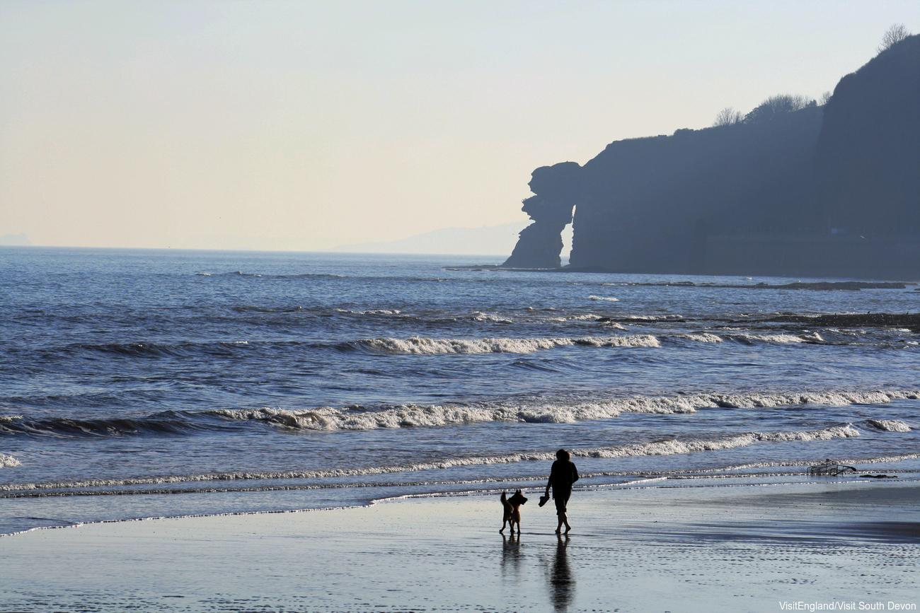 Women walsk her dog on the coast of dawlish.jpg