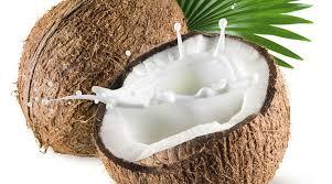 Coconut milk.jpeg