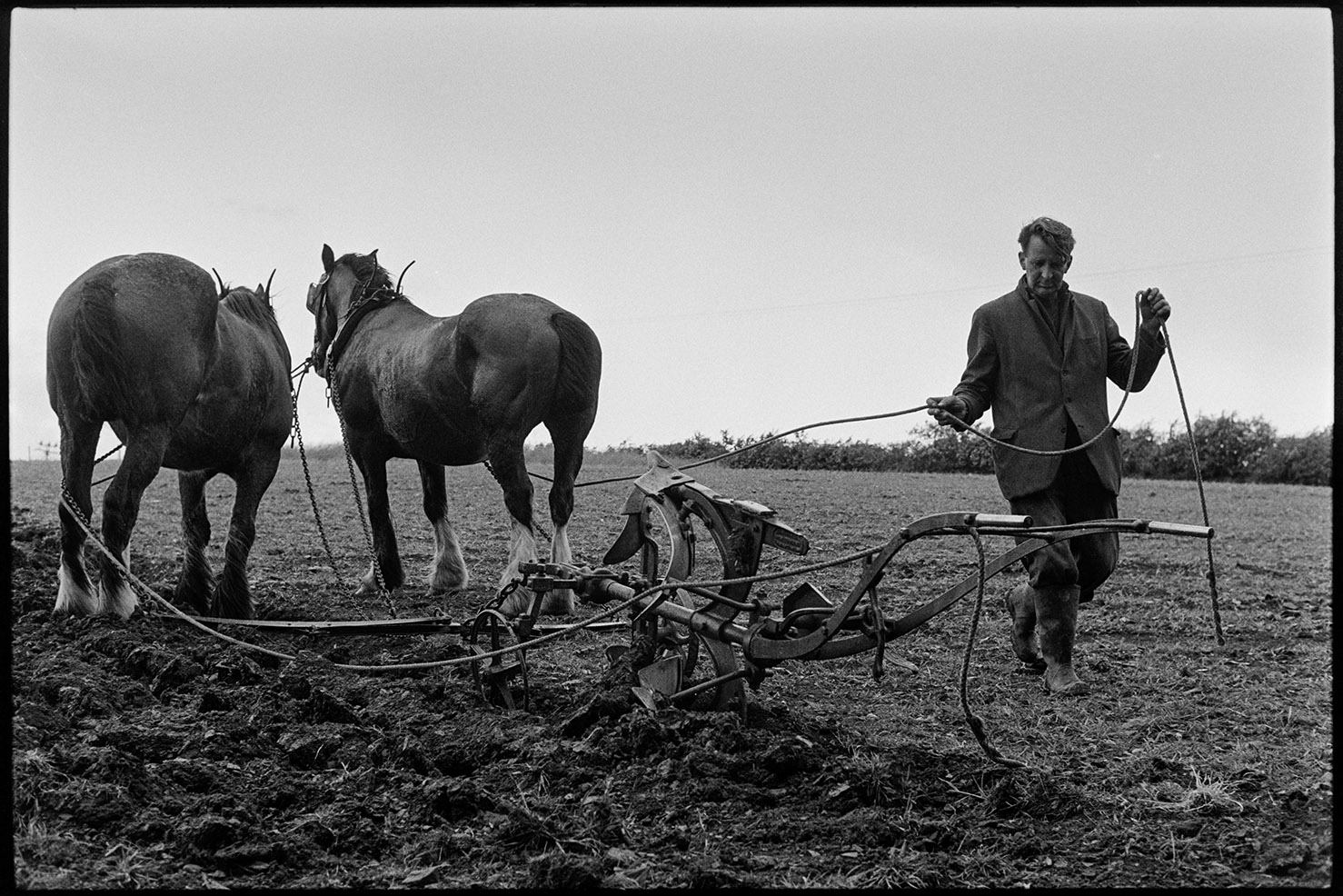 Man ploughing with two horses - Seymour Husbands, Charles, Sandy Park, June 1975. Documentary photograph by James Ravilious for the Beaford Archive © Beaford Arts