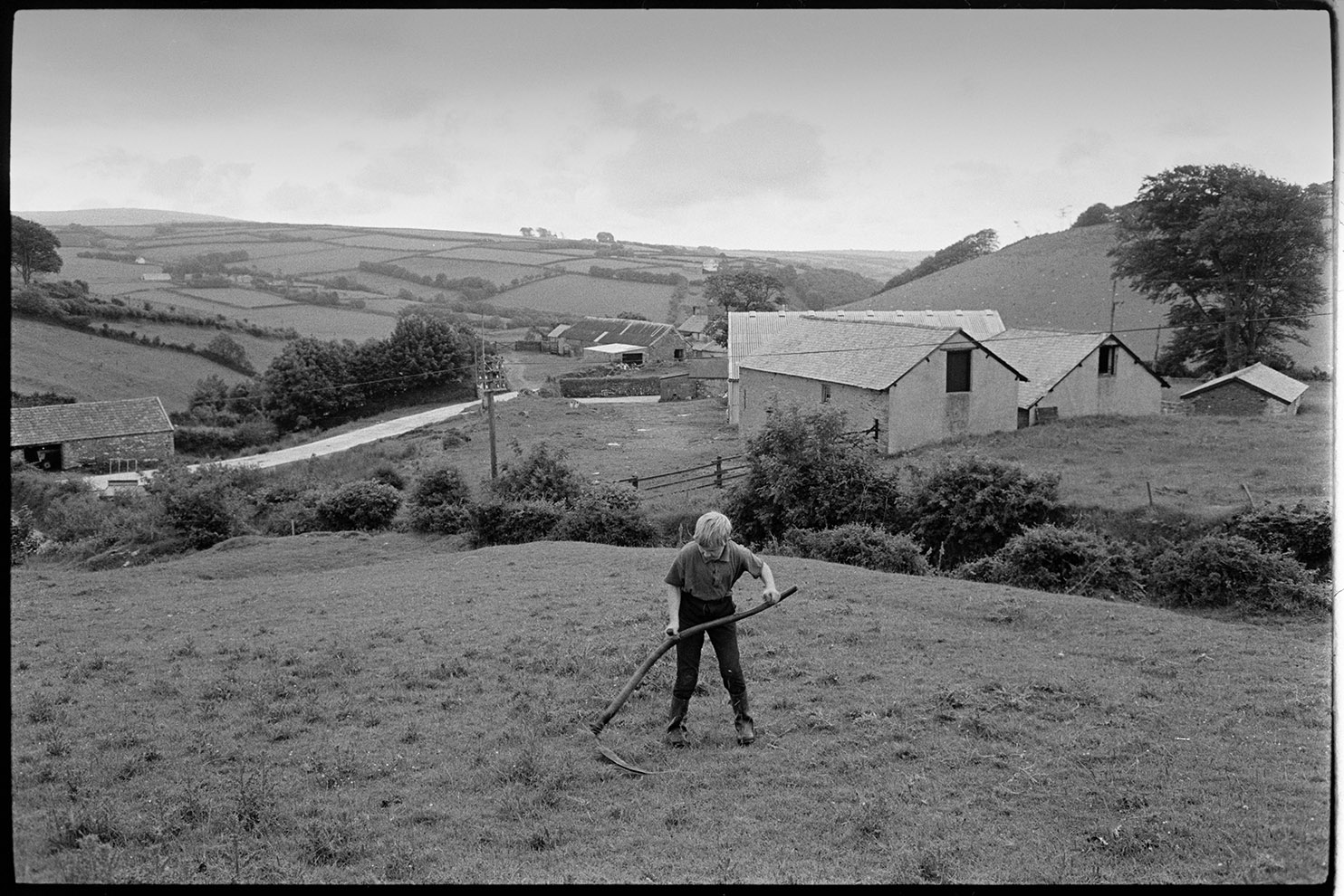 Boy scything, Bratton Fleming, July 1974.