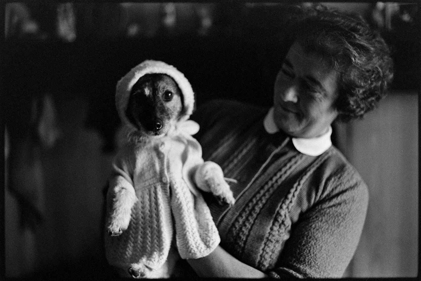 Dog in fancy dress, Oak family, Hatherleigh, Deckport, May 1976